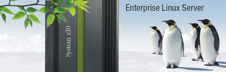 System Z Linux